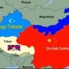 "SİHAM HİNDAVİ YAZDI ""TÜRKİSTANLIYIM ! """