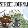 WALL STREET JOURNAL : ÇİN, MÜSLÜMAN UYGURLARI BASKI VE ZULÜM  İLE YOK EDİYOR