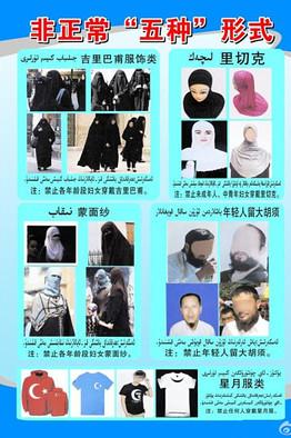 BN-DZ509_weibo_DV_20140806012714