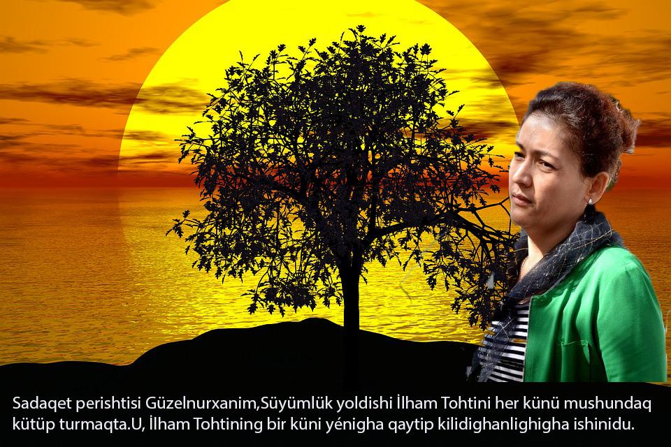 tree-1076831_960_720