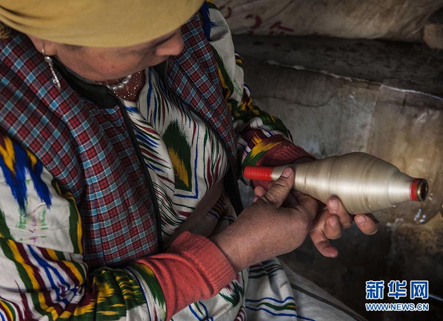 新华社照片,和田(新疆),2016年11月4日 和田传统艾德莱斯绸再放光彩 11月3日,一名纺织工检查缠好的丝线,确保其完好平整。 在新疆塔里木盆地南缘的和田市吉亚乡一家从事传统手工艾德莱斯绸生产作坊里,工人正在忙碌着,抽丝、纺丝、排线、扎染,最终纺织成匹,丝绸古道上的传统技艺,再次活跃在这片绿洲之上。 艾德莱斯绸主要发源于新疆和田市吉亚乡,是新疆传统特色手工艺织品。吉亚乡至今仍保留着古代植物扎染技术和传统木制纺织机。艾德莱斯绸的花纹样式来源于生活,有常见的巴旦木花、木版花纹和梳子花等图案。 由于制作工艺复杂和成本较高,传统艾德莱斯绸制作技艺并不常见,近年来在政府和企业扶持下,传统艾德莱斯绸再现昔日的绚丽色彩。据悉,吉亚乡现有艾德莱斯绸生产商、合作社50余家,艾德莱斯绸生产专业户近2000户,年产量达50余万匹,户均一年可增收8.4万余元。 新华社记者 魏海 摄